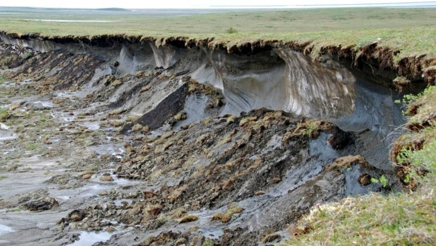 Melting permafrost in Canada's Northwest Territories, a sign of accelerating global heating. (Photo: Charles Tarnocai/Agriculture and Agri-Food Canada)