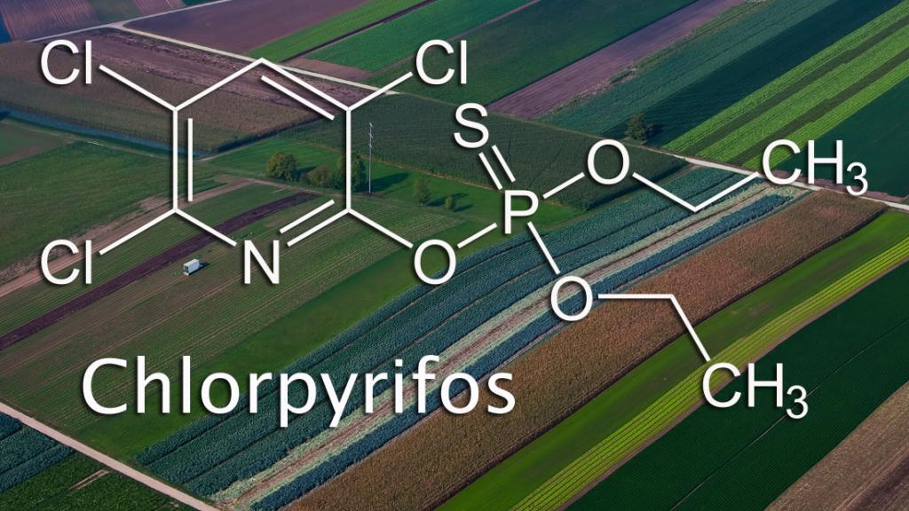 Chlorpyrifos molecular structure