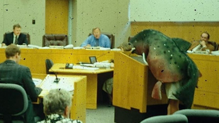 Brock Dolman in a salmon suit testifying to the Sonoma County Board of Supervisors on behalf of Totem Salmon.