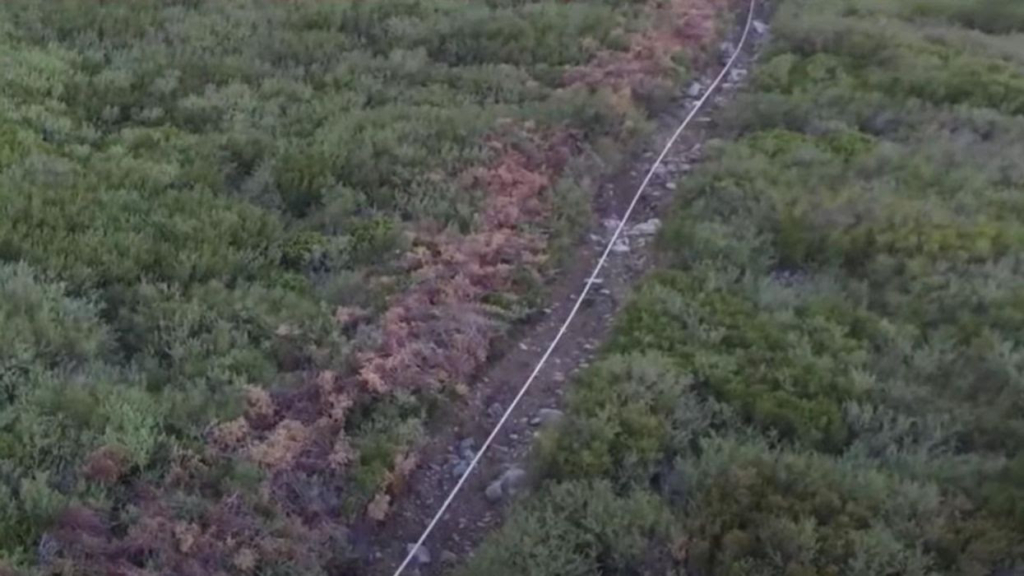 Dry stream in San Bernadino National Forest